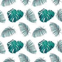 monstera verde y hojas de palma