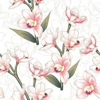 Pattern of botanical pink Orchid flowers  vector