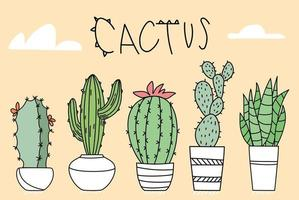 Set of Cactus in Pots of Different Shapes