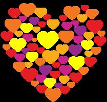 composição do coração