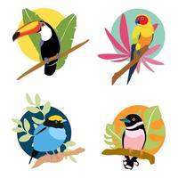 composición de pájaros y hojas tropicales vector