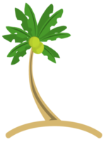 kokosnootboom png