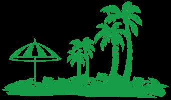 Palmen png