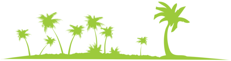 palmbomen png