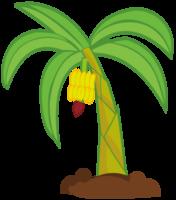 Palmeira png