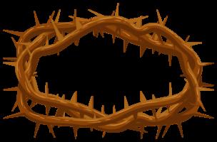 coroa de espinho