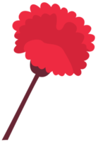 fleur oeillet png