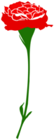 Nelkenblume png