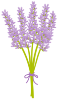 Lavender flower png