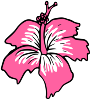 bloem Polynesisch