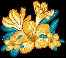 mazzo di fiori png