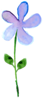 fiore color acqua