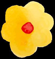 acquerello di fiori