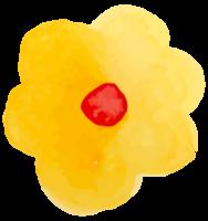 bloem aquarel