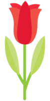bel fiore png