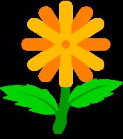 fiore carino png