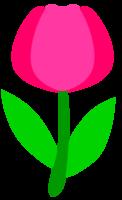 Cute flower png