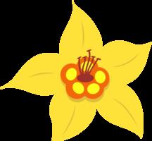 Flower vanilla png