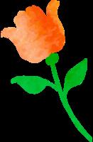 aquarela flor