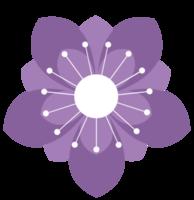 fiore fiore