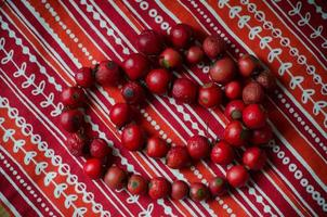 red beads from  dog-rose  berries photo