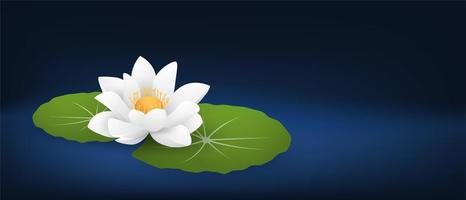White Water Lily and Pads on Dark Blue vector