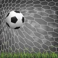 Soccer ball or football in soccer goal vector