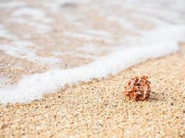 Sanur Beach photo