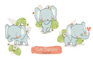 Set of Baby Elephants with Tropical Floral Elements