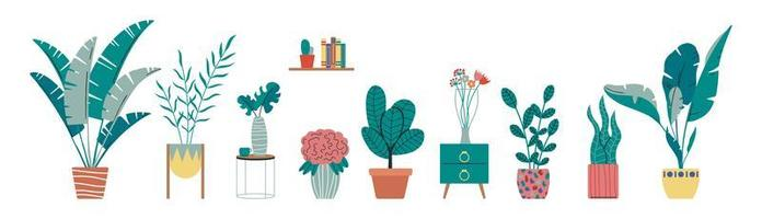 Collection of indoor, house tropical plants vector