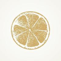 fatia de limão desenhada de mão vetor
