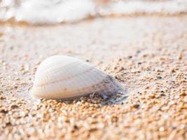 Sanur strand