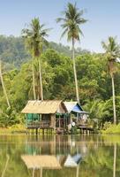 Stilt houses, Ream National Park, Cambodia photo