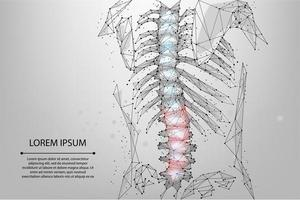 Abstract mesh line and dot physiotherapy human spine vector