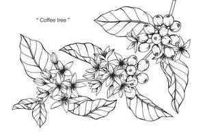 mão desenhada flor botânica café e folhas vetor