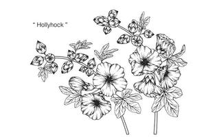 Hand drawn botanical Hollyhock flower and leaves vector