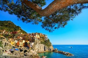 Manarola village and pine tree, rocks,  sea at sunset. Cinque