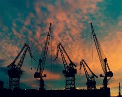 grúas en la hermosa puesta de sol foto