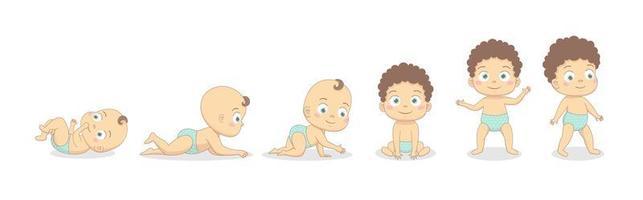 processo de crescimento do bebê menino. vetor