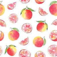 Acuarela de pomelo y duraznos de patrones sin fisuras
