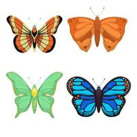 Butterfly set isolated on white background vector