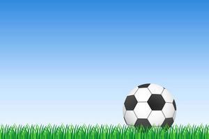 Balón de fútbol o fútbol sobre hierba verde vector