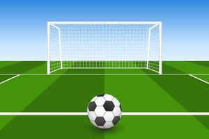 Soccer Ball on Grass in Front of Goal vector