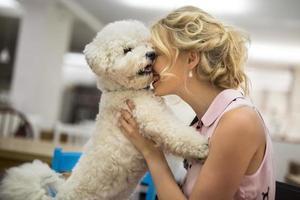 Girl his white curly Bichon Frise dog