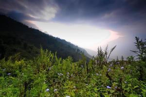 Morning on alpine Sapa photo