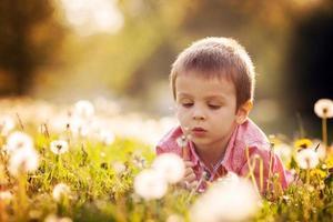 lindo niño en un campo de diente de león, divirtiéndose