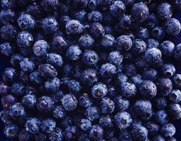 blueberries shot from top down view