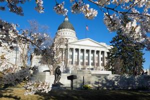 Capitol Building and cherry blossoms in Salt Lake City, Utah