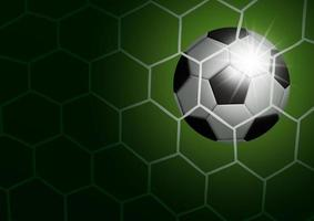 Soccer ball in goal on green vector