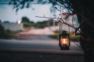 linterna vintage en un árbol